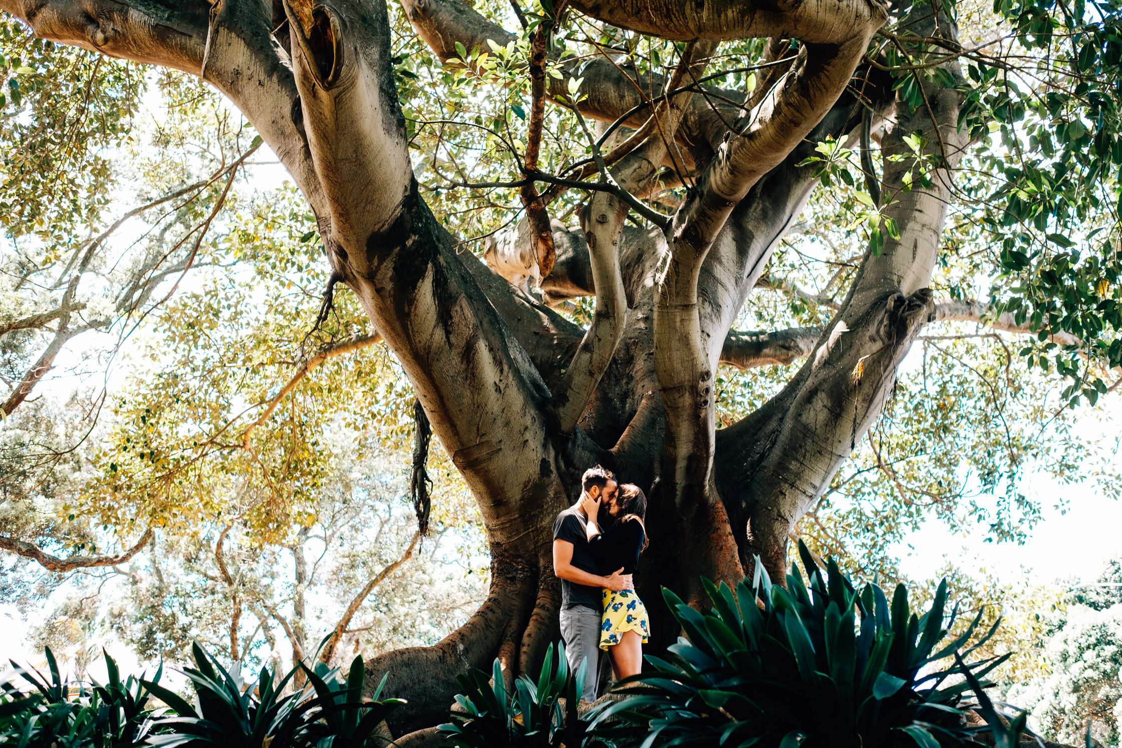 Amy and Daniel - Auckland, New Zealand