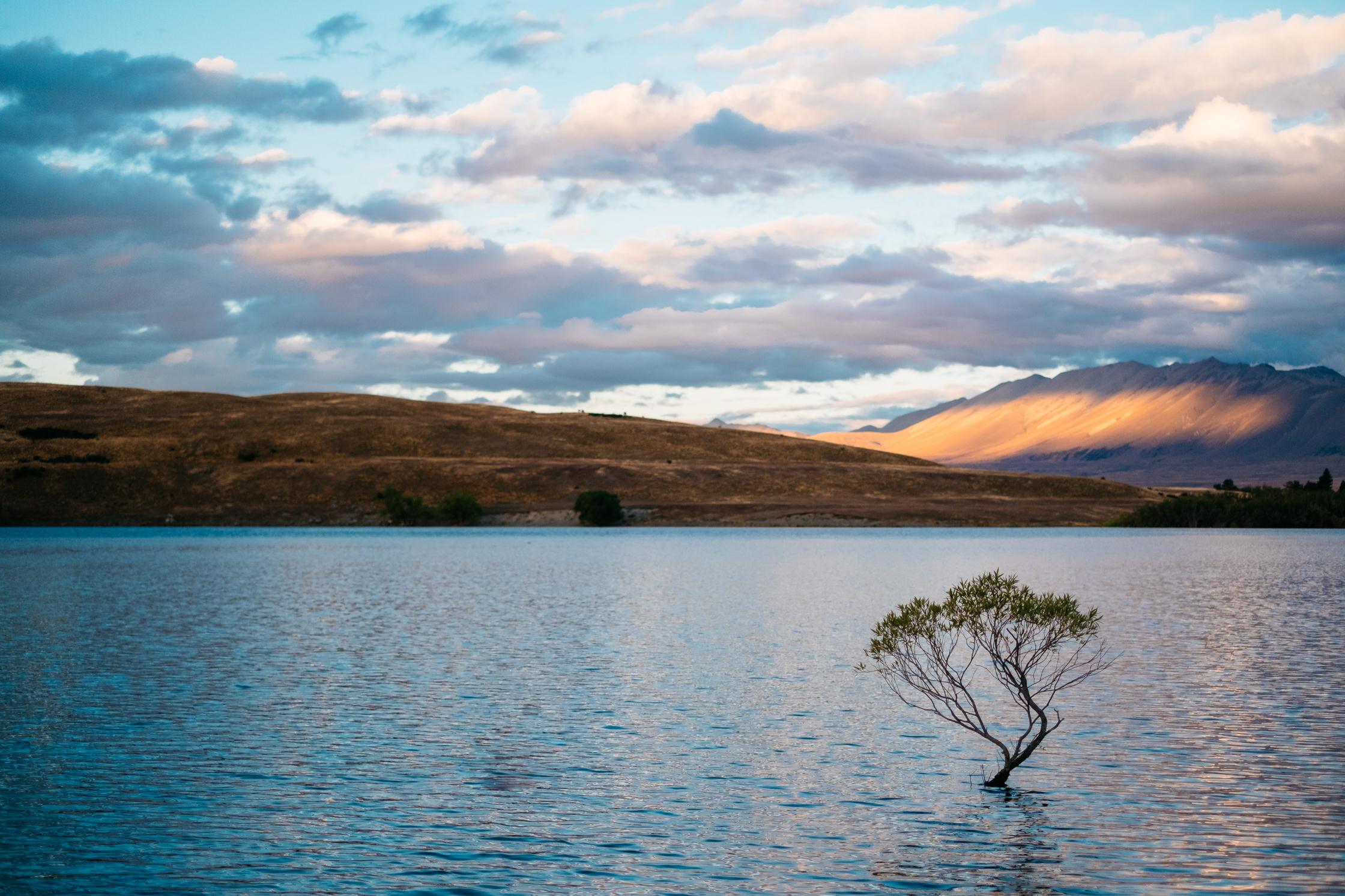 Neuseeland – Lake Tekapo – Teil 5